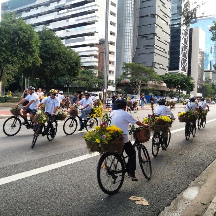 avenida paulista.jpg